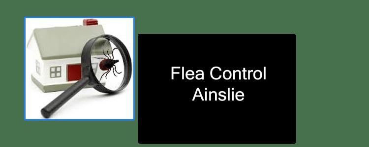 Flea Control Ainslie
